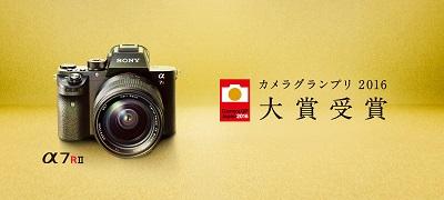 Sony_camera-gp.jpg