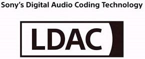 LDAC1.jpg